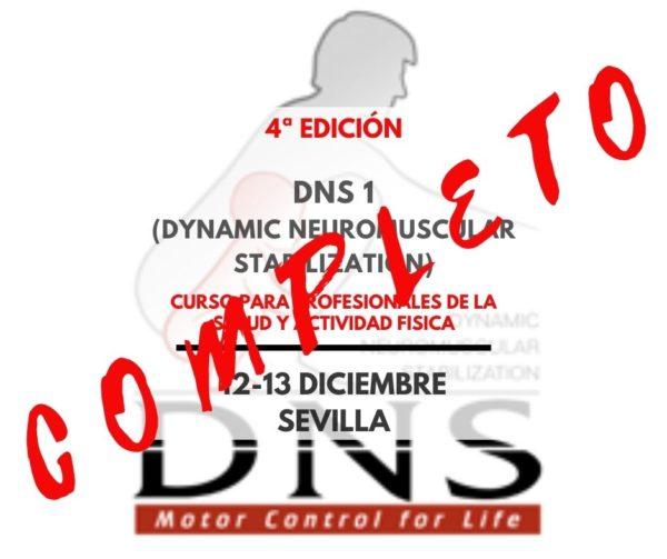 DNS SEVILLA COMPLETO