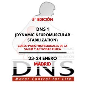 DNS nivel 1