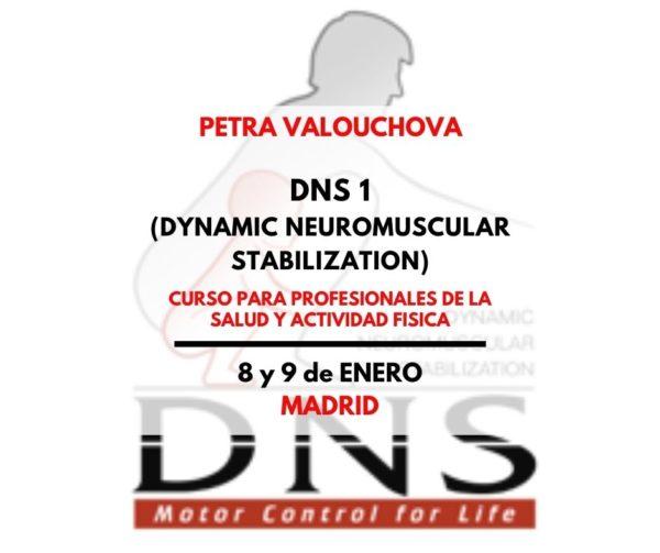 DNS madrid 9 edicion